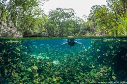 swimm in cenote after visit of Coba ruins