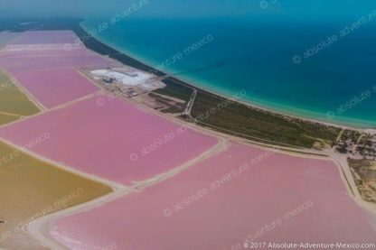 pink water in las coloradas, aerial view