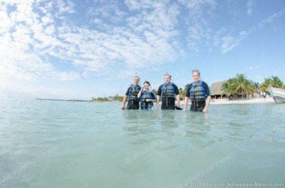 Excursion with turtles in akumal