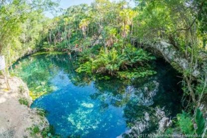 cenote nicteha located in tulum