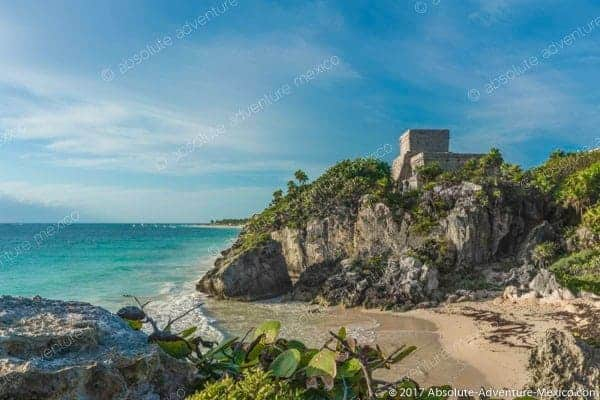 Bsea Applies Work Product Protection To >> Swim With Turtles Tour With Visit Of Tulum Ruins All Private Best Deal