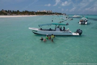 boat isla mujeres whale shark tour