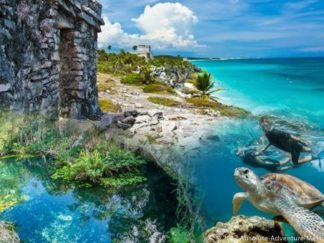 tour to tulum ruins, snorkeling in cenote and with turtles in akumal bay